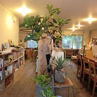《ブックカフェ探訪№1》古本に古着、食器まで型にはまらないブックカフェ