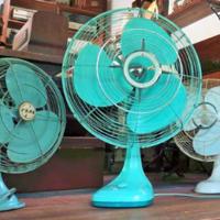 【売れる商品リサーチ】「朝ドラで見た」と問い合わせ多数の扇風機