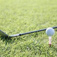 ゴルフパートナー 知名度拡大狙う