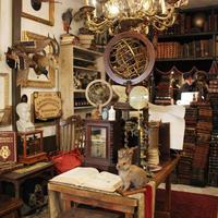 《繁盛店の店づくりVol.193》Art&Antiques LECURIO、店内で撮影もできるアンティークショップ
