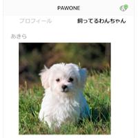ぱうれんつ、「ぱうわん」飼い主とペットシッターのマッチングアプリ