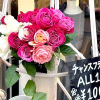 タイグリス、婦人古着店で花の店頭販売イベント