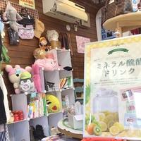 eco shop おっぽのお、エコなお店で「醗酵ドリンク教室」
