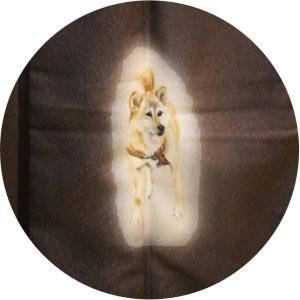 珍しい犬の絵柄の着物
